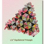 De gelijkzijdige driehoek